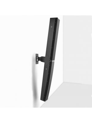 Swivel and tilt bracket for a pair of P10s